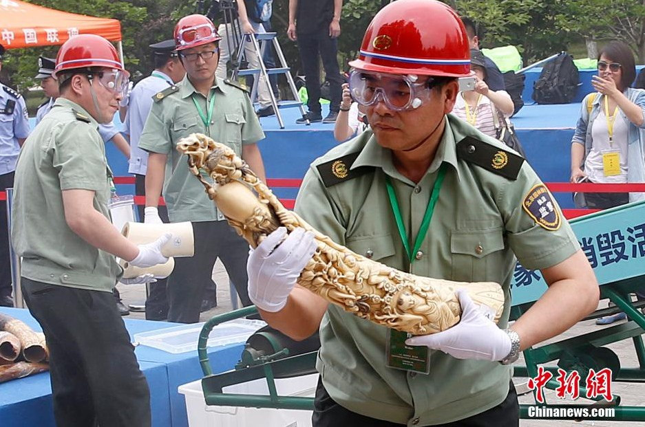 China Bans Its Ivory Trade in 'Game Changing' Move for Elephants