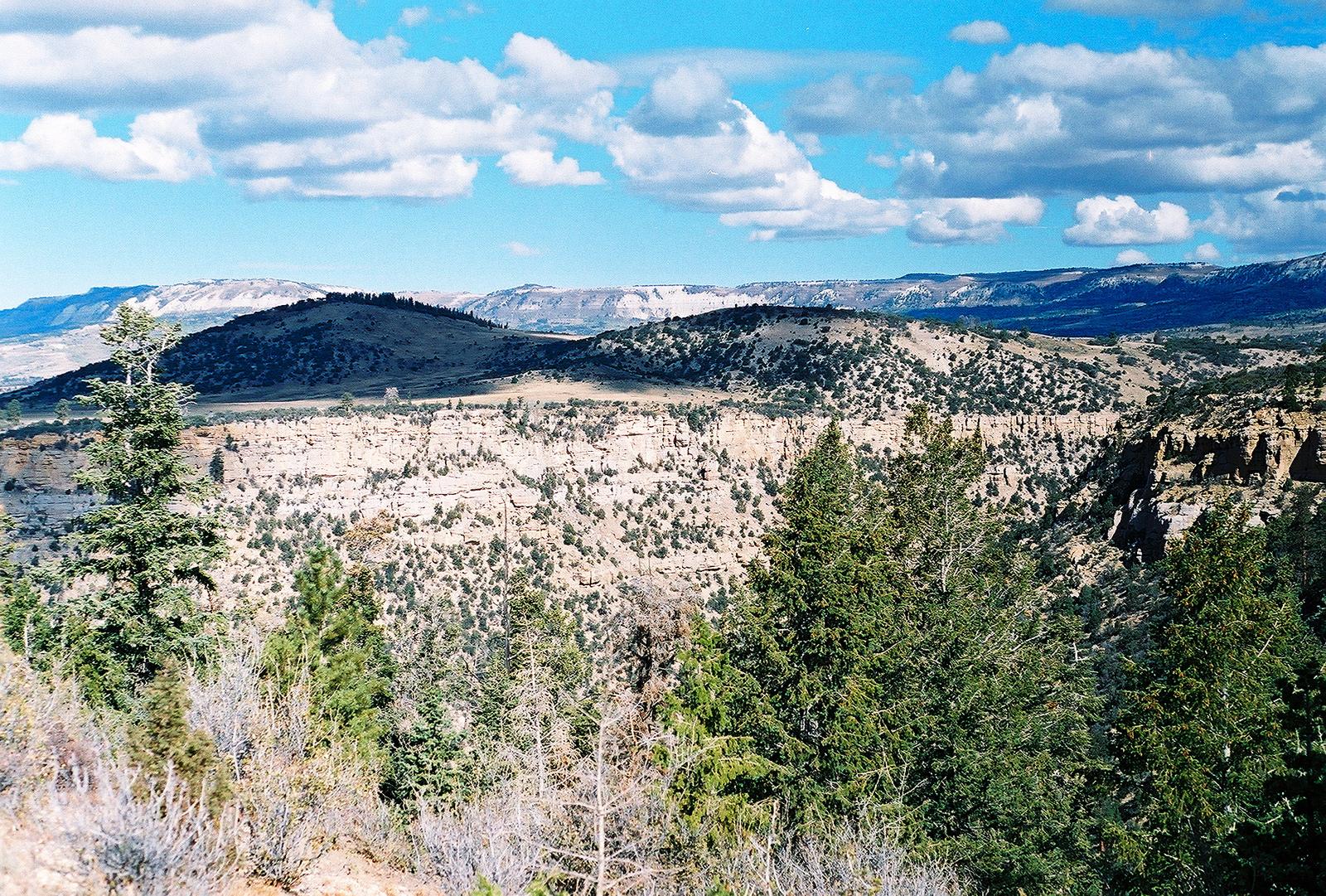 Interior Leases 1st of 14 U.S. Coal Strips Not Under Moratorium: 55M Tons in Utah Ntl. Forest