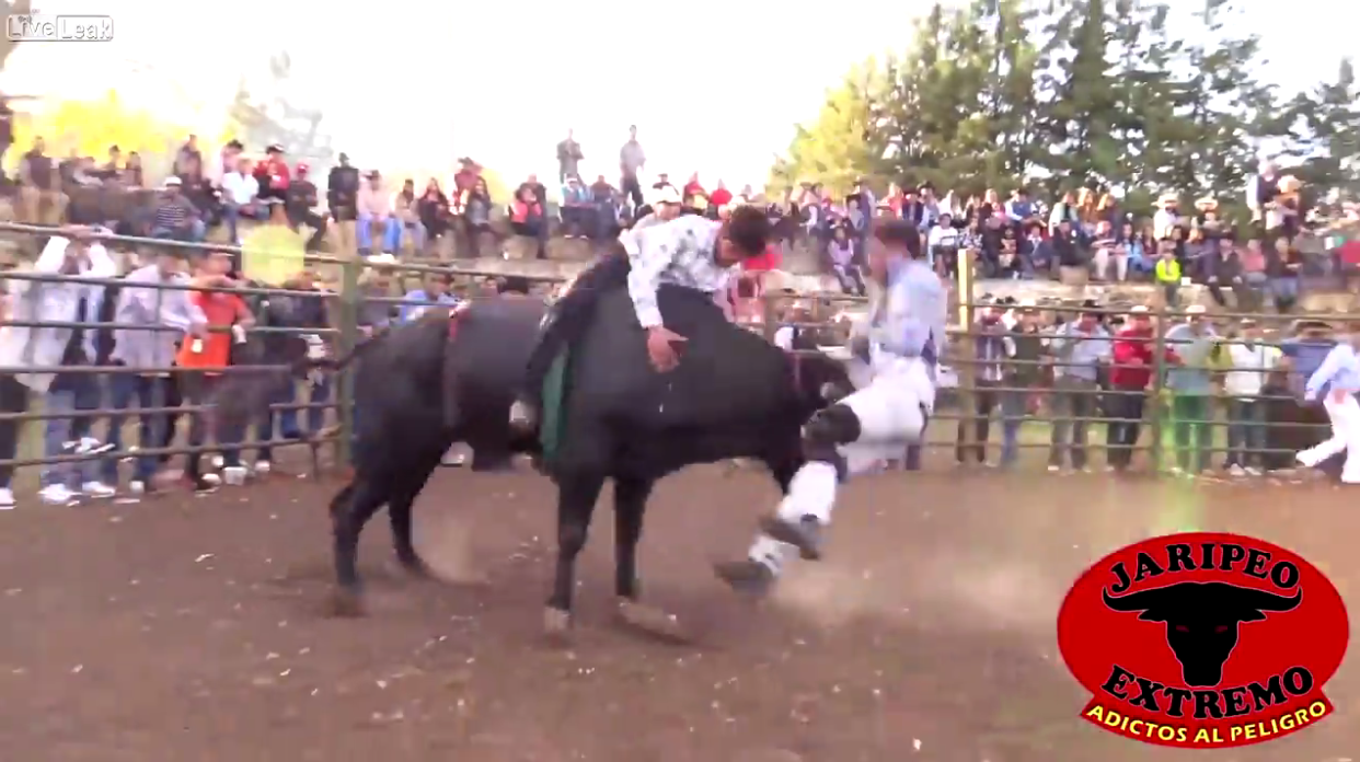 LiveLeak Video: Bull Takes Savage Revenge, Terrifies Arena, Mauls Rodeo Clown, Bull Riders