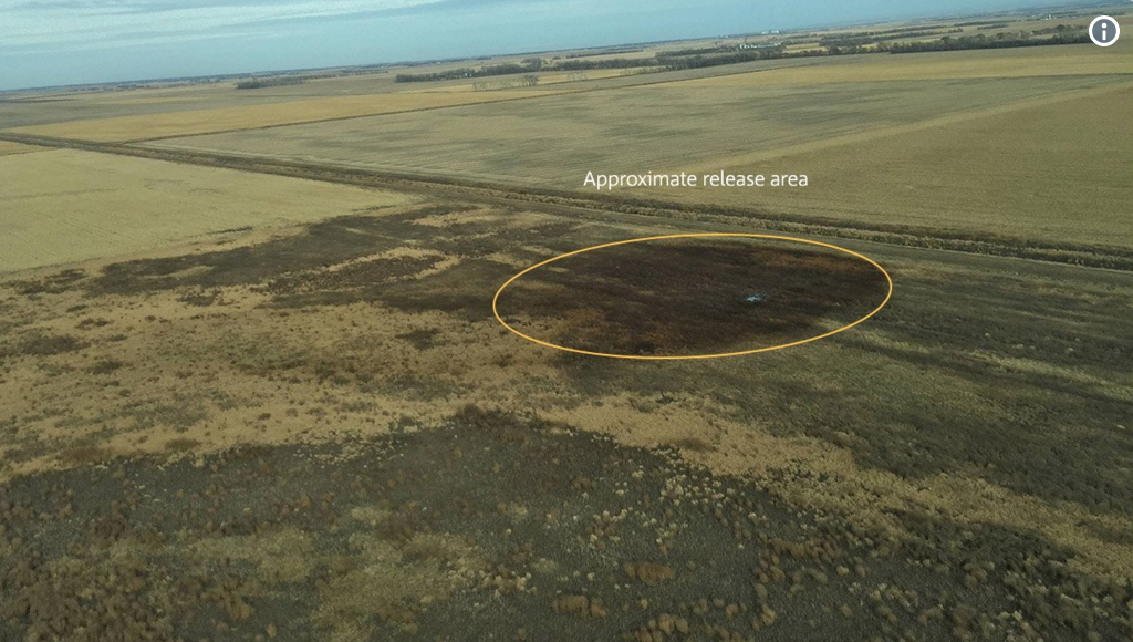 Keystone Pipeline Just Vomited 210,000 Gallons of Crude onto Land in South Dakota