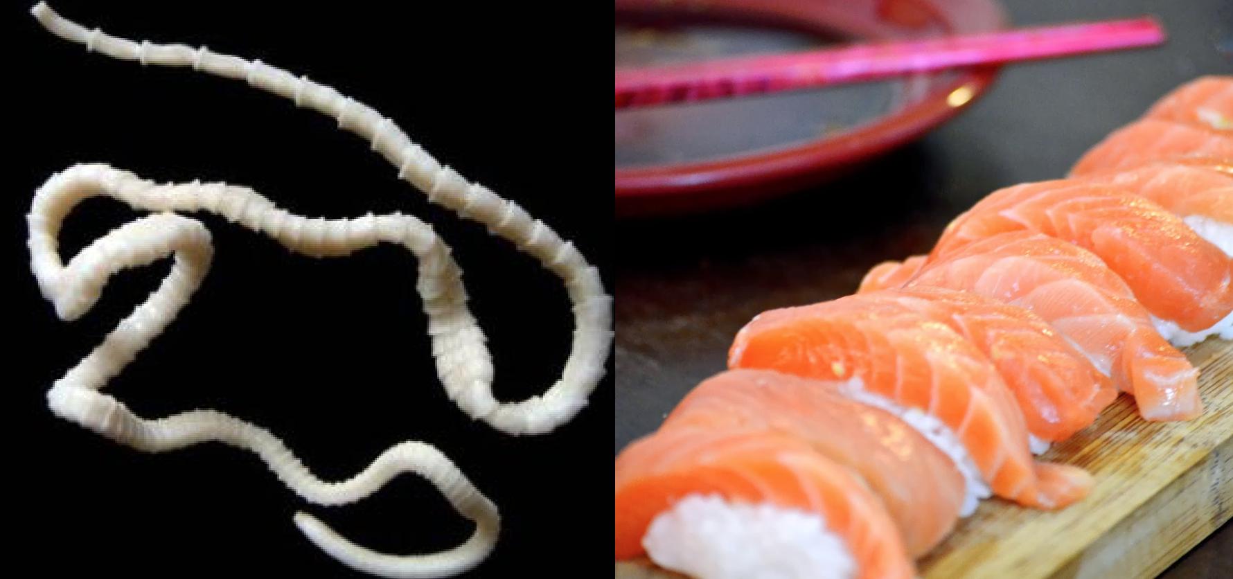 Fresno Man Develops 5-Ft. Tapeworm from Salmon Sashimi, CDC Issues Sushi Health Advisory