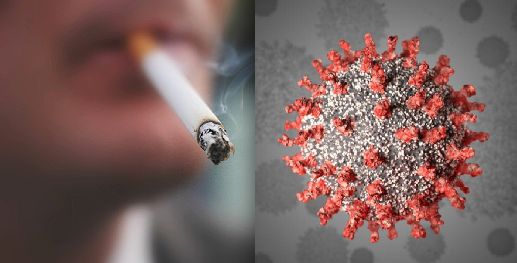 Tobacco Smokers Less Likely to be Hospitalized for COVID-19, Data Suggests — Go Figure