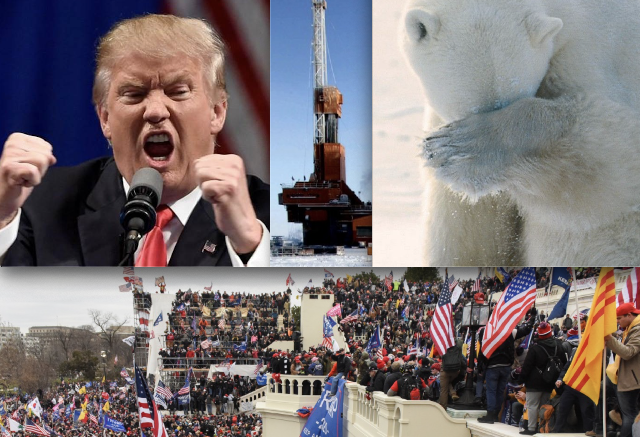 During Insurrection, Trump Admin Auctioned ANWR for Oil Drilling; State of Alaska was Biggest Bidder