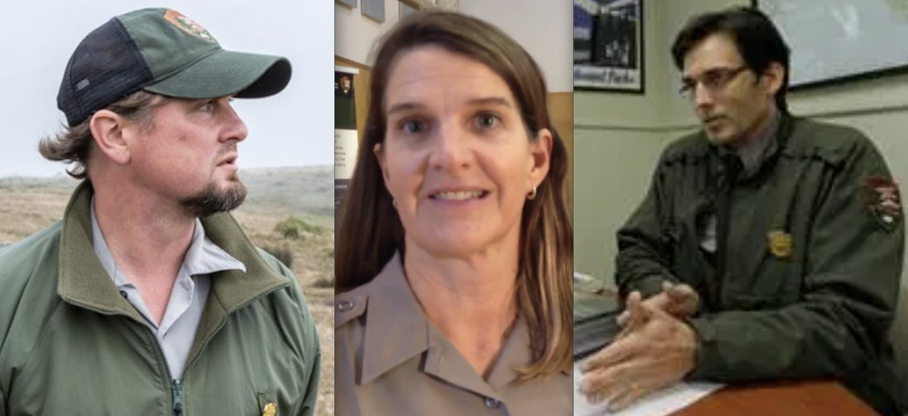PETITION WATCH: Petition Calls for Firing of National Park Service Leaders over Tule Elk Deaths at Point Reyes